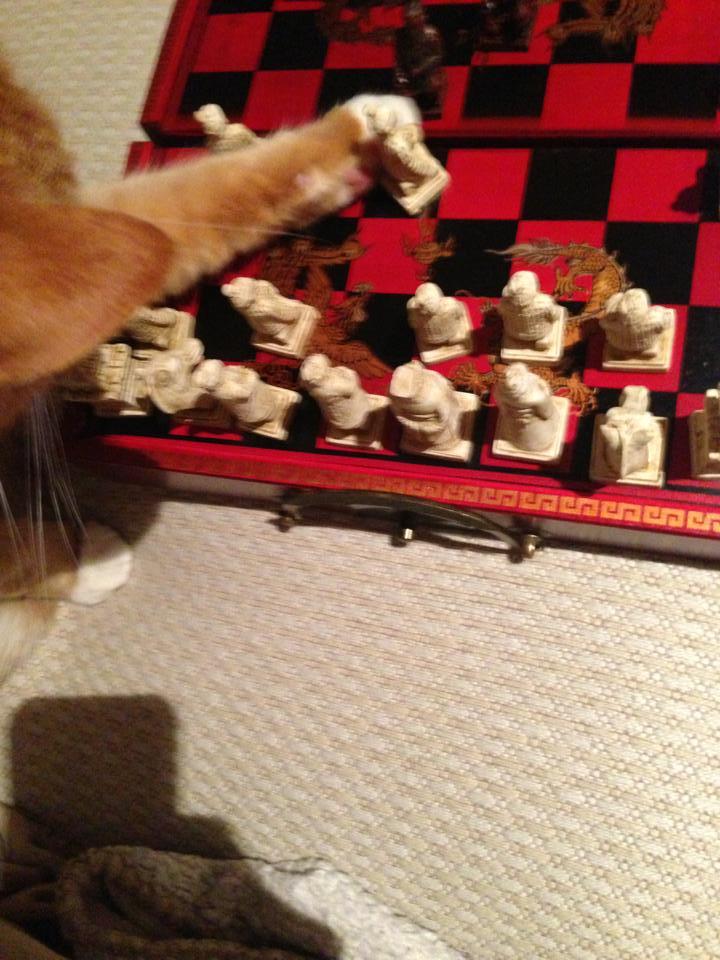 Calvin Chess 2